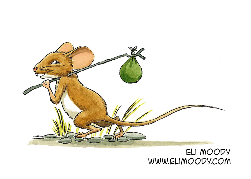 adventuring mouse colors fb