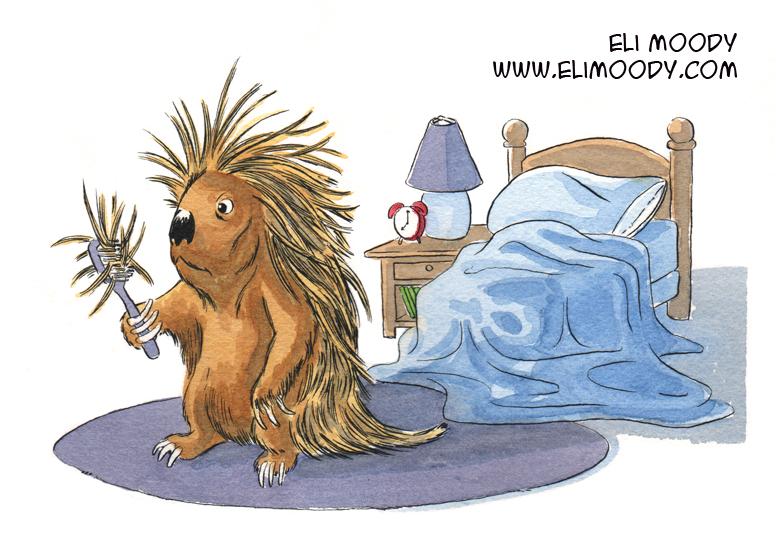 porcupine fb