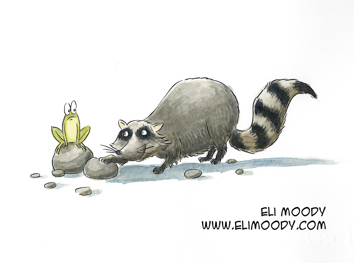 raccoon-colors