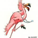 dancing flamingo