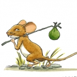adventuring mouse colors