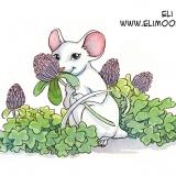 coy mouse