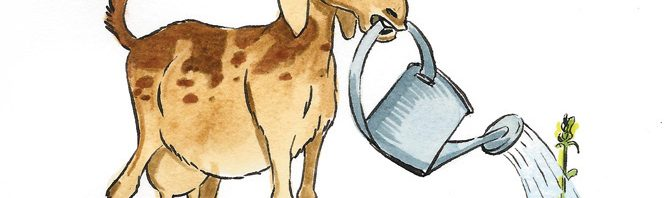 Goat with watering can